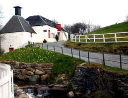 Whisky Distillery - Courtesy of Ms. Ivana Wilson, FWR